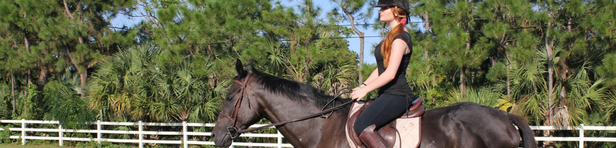 Les meilleures ceintures équestres que chaque cavalier devrait voir post thumbnail image